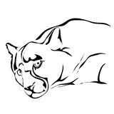 Outline sad jaguar or puma vector. Can be use for logo or tattoo stock illustration