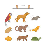 Outline set of pets. Line group of pets. Outline set of pets. Linear silhouettes animals  on white. Line group of pets. Vector icons parrot, dog, mouse and Royalty Free Stock Images