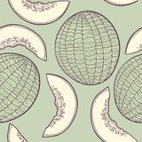 Outline stylized seamless pattern with melon Stock Images