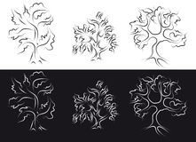 Outline trees. Outline of stylized trees on a white and black background Royalty Free Stock Images
