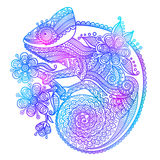 The outline vector illustration of a rainbow chameleon isolated on white background Stock Images