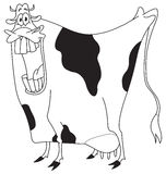Outlined cow Royalty Free Stock Images