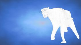 Outlined 3d rendering of a tiger inside a blue studio Royalty Free Stock Photo