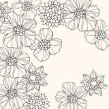 Outlined Doodle Flowers Vector stock illustration