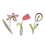 Outlined hand drawn flower collection Royalty Free Stock Image