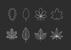 Outlined leaves icons Royalty Free Stock Photos