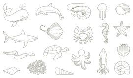 The outlines of fish and other sea creatures. Stylized image Stock Photos