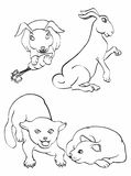 Outlines of rabbit and cat. Illustration of rabbit and cat in outline for coloring book Royalty Free Stock Photo
