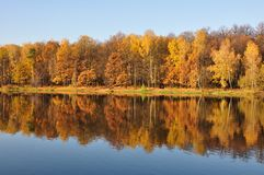 Outono. Imagens de Stock Royalty Free