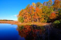 Outono Imagem de Stock Royalty Free