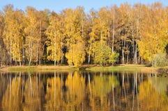 Outono. Imagem de Stock Royalty Free