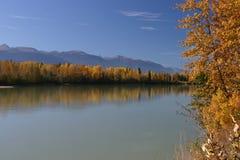 Outono 66 no rio de Fraser Fotografia de Stock