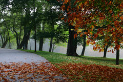 Outono #7 Imagem de Stock Royalty Free