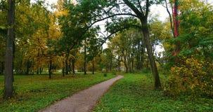 outono aéreo do parque vídeos de arquivo