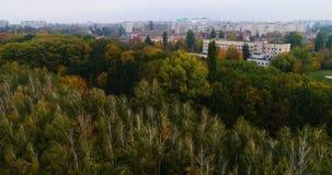 outono aéreo do parque video estoque