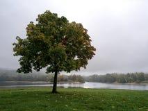 outono adiantado em Jablonec nad Nisou, República Checa Fotografia de Stock