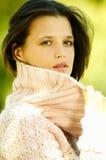 Outono ao ar livre 2 imagem de stock