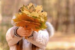Outono ao ar livre Fotografia de Stock