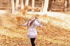 Outono ao ar livre Imagem de Stock
