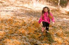 Outono ao ar livre Imagem de Stock Royalty Free