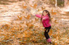 Outono ao ar livre Imagens de Stock