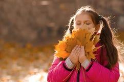 Outono ao ar livre Foto de Stock Royalty Free