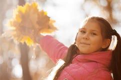 Outono ao ar livre Imagens de Stock Royalty Free