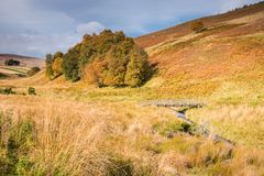 outono ao longo da estrada militar velha Fotografia de Stock Royalty Free