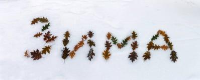Outono atrasado Foto de Stock Royalty Free