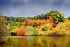 outono australiano colorido na montagem elevada Imagens de Stock Royalty Free