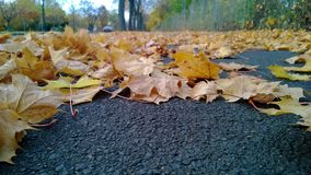 outono bávaro Foto de Stock Royalty Free