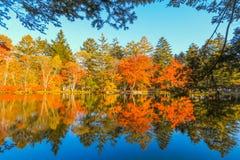 outono bonito de Japão no ike da lagoa de Kumoba ou do Kumoba de Karuizawa, Nagano Japão foto de stock