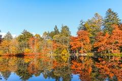 outono bonito de Japão no ike da lagoa de Kumoba ou do Kumoba de Karuizawa, Nagano, Japão imagens de stock royalty free