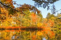 outono bonito de Jap?o no ike da lagoa de Kumoba ou do Kumoba de Karuizawa, Nagano Jap?o fotos de stock