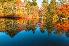 outono bonito de Jap?o no ike da lagoa de Kumoba ou do Kumoba de Karuizawa, Nagano Jap?o imagens de stock royalty free