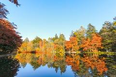 outono bonito de Jap?o no ike da lagoa de Kumoba ou do Kumoba de Karuizawa, Nagano Jap?o foto de stock royalty free