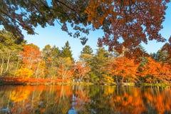 outono bonito de Jap?o no ike da lagoa de Kumoba ou do Kumoba de Karuizawa, Nagano Jap?o imagem de stock royalty free