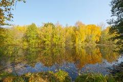outono bonito em outubro imagens de stock royalty free