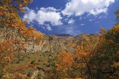 outono bonito nas montanhas fotografia de stock royalty free