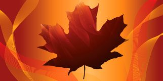 Outono brilhante imagens de stock royalty free