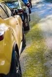 outono brilhante das folhas de outono do carro amarelo foto de stock