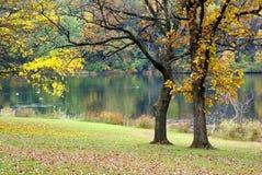 Outono cénico imagens de stock