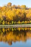 Outono colorido Aleia ao longo do riverbank no fundo do parque do outono Reflexões no rio fotos de stock royalty free