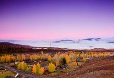 Outono colorido de China Xinjiang fotos de stock