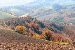 outono com as árvores amarelas e alaranjadas no monte do Marche na região de Montefeltro foto de stock
