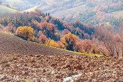 outono com as árvores amarelas e alaranjadas no monte do Marche na região de Montefeltro fotos de stock royalty free