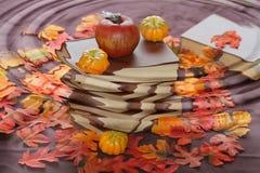 Outono com chuva. Imagens de Stock Royalty Free