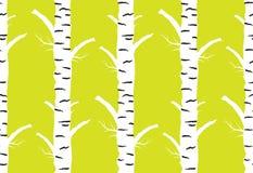 outono da árvore de vidoeiro fundo sem emenda do amarelo do teste padrão Foto de Stock Royalty Free