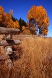 Outono da cerca 4. fotos de stock