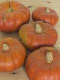outono da colheita da abóbora Fotos de Stock